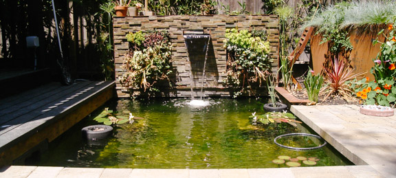 Formal Pond Kit By Everything Ponds