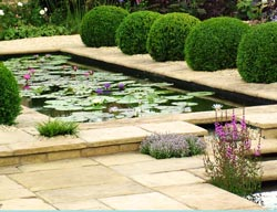 pond design water garden