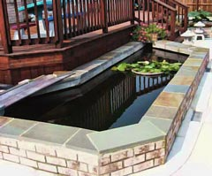 pond designs - above ground