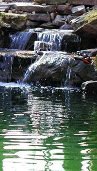 Beau Garden Ponds Waterfalls