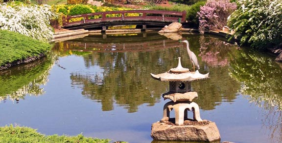 Capturing The Traditional Style Of Japanese Water Gardens