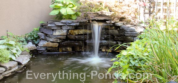 Pond designs everything for Above ground koi pond design ideas