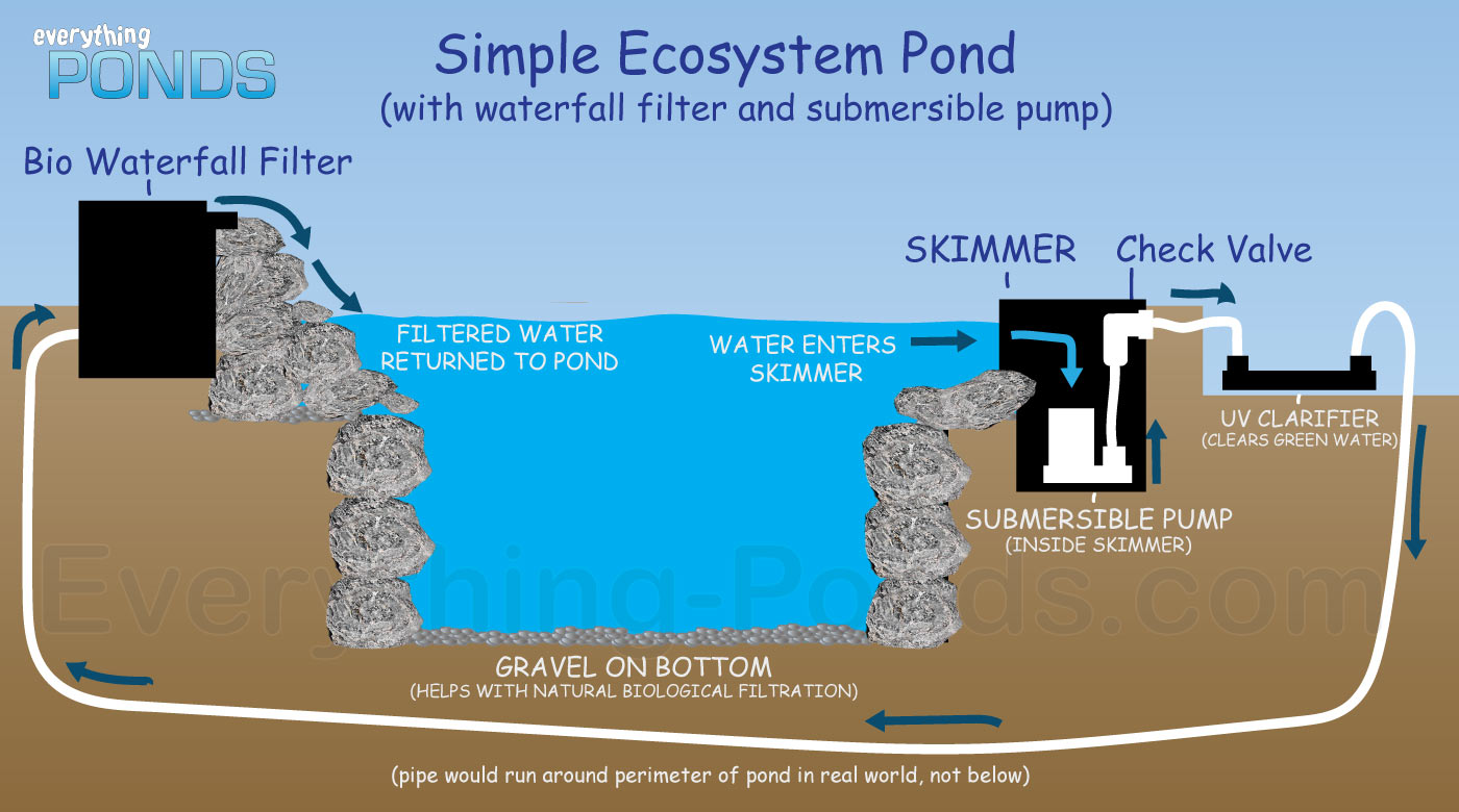Everything ponds complete pond kits everything for Small pond filter design