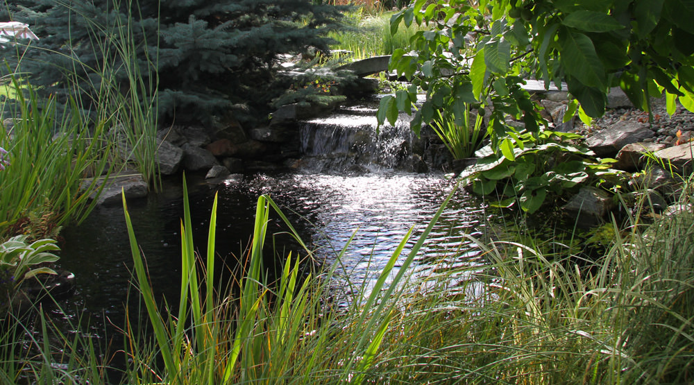 choosing-a-style-natural-style-water-garden