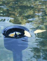 Choosing a Pond Skimmer - Everything